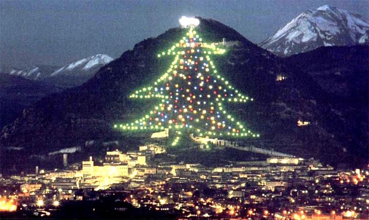 Agriturismo Valle Verde - Gubbio - Albero Di Natale - Christmas Tree